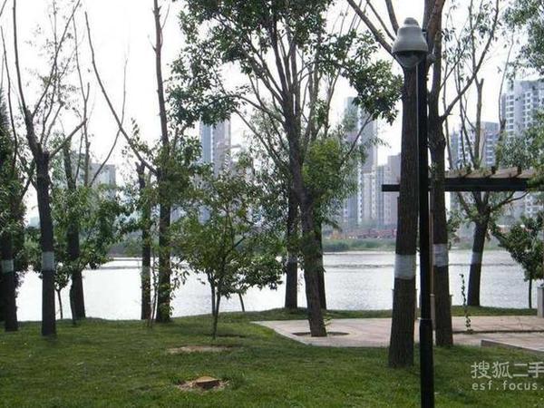 富力津门湖-图3