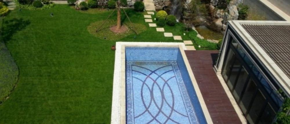 带游泳池的漂亮的别墅房子图片