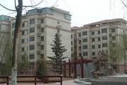 中国新时代高层