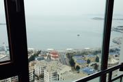东海世家 香港中路全海景 商住楼210平 低价出租