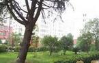 武汉大学珞桂教师小区