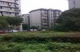 青山现代花园-外观图1