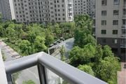 奥体新城丹枫园