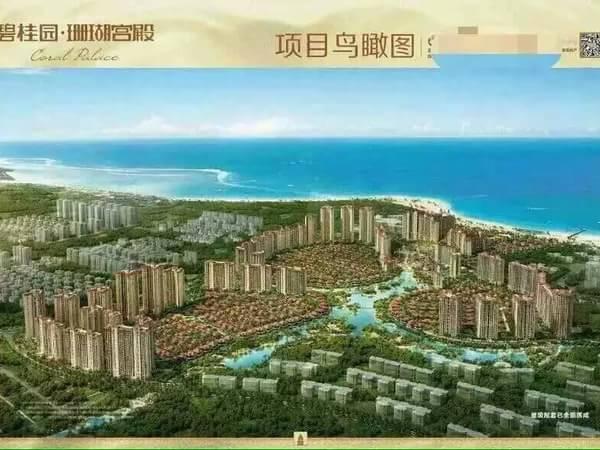 碧桂园珊瑚宫殿-户型图3