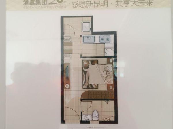 涌鑫哈弗酒店式公寓15万起月租1200即买即 即买即盈利-室内图-4