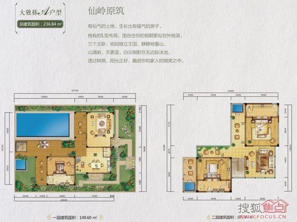 龙湾·雨林谷-户型图2