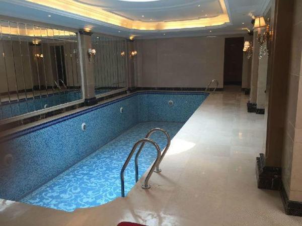 高端联排温泉入室别墅全明格局,送私家游泳池阁楼挑空-室内图-2