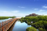 澄迈富力红树湾,精装小洋房享内外双海景观,2200亩湿地公园-室外图-363081550