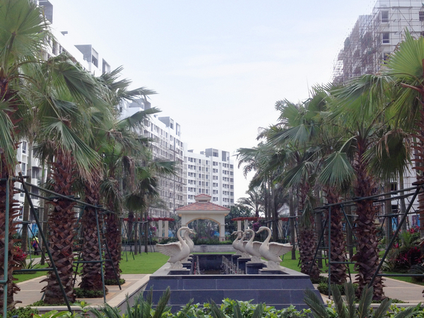 鲁能海蓝福源位处沿海长寿核心地带盈滨半岛,坐拥国内稀有内外的-室外图-346662598