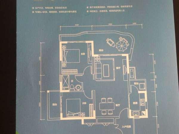世界长寿之乡半岛壹号养生度假号别墅开发商直销现买现住-室内图-8