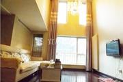 林 肯公寓 5858平 挑空客厅 居住办公均可!
