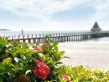 文昌高隆湾两房两厅海景房送超大花园,畅快观景,独享狭长海岸线