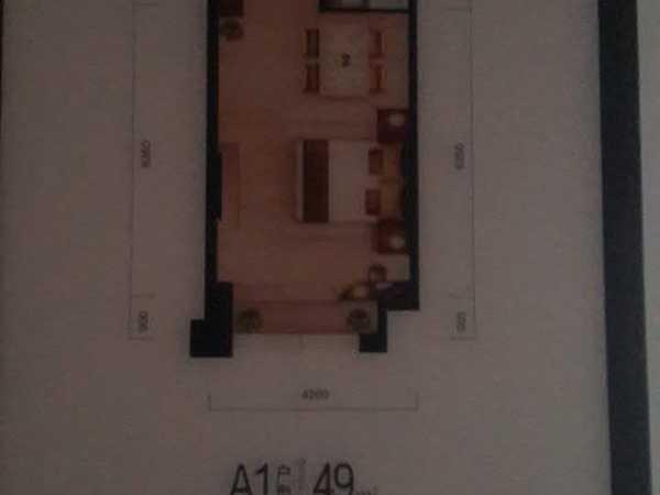 你不清楚的武汉楼市 50平小户不限购总价67万-室内图-6