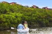 澄迈富力红树湾,精装小洋房享内外双海景观,2200亩湿地公园-室外图-363081552