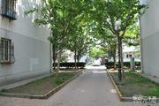 麦格理花园 南北通透 采光好 送10平米空间-室外图-363076981