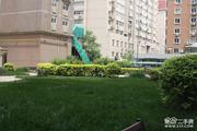 新文化花园