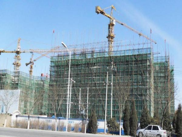 北京苏活-图5