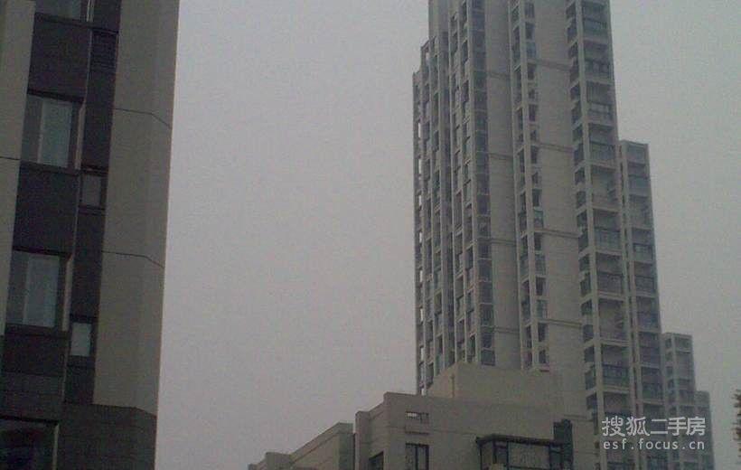 环渤海国际公寓